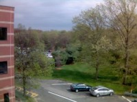 Spring out my window - Natick (May 2008)
