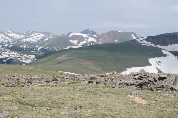 On Trail Ridge Road, ca. 13,000 feet (Rocky Mountain NP, Colorado)