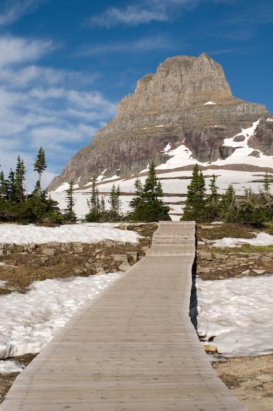 On our fifth hike, the boardwalk (Glacier NP, Montana)