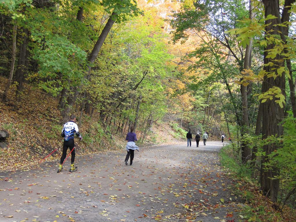 Runners and dude roller-skiing in Mont-Royal park, Montreal